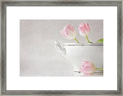 Soup Of Tulips Framed Print by Claudia Moeckel