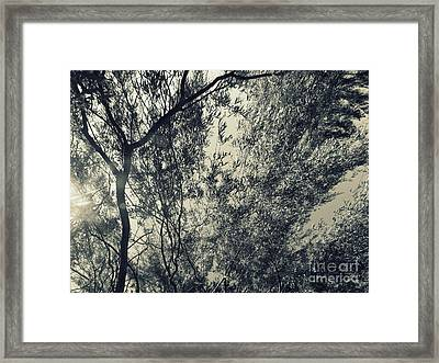 Source Of Energy 5 Framed Print by France Laliberte