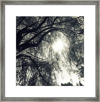 Source Of  Energy Framed Print by France Laliberte