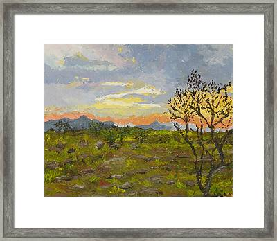 South African Sunset Framed Print