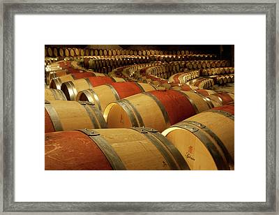 South America, Chile, Colchagua Framed Print by Jaynes Gallery
