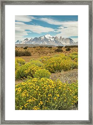 South America, Chile, Patagonia Framed Print by Jaynes Gallery