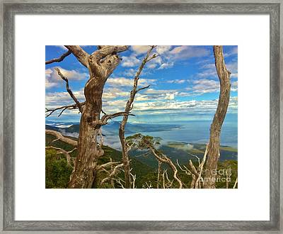 South American Coast Framed Print