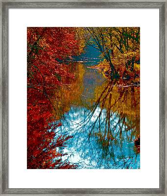 South Anna River Reflections Framed Print