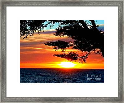 Framed Print featuring the photograph South Bay Sunset by Steed Edwards