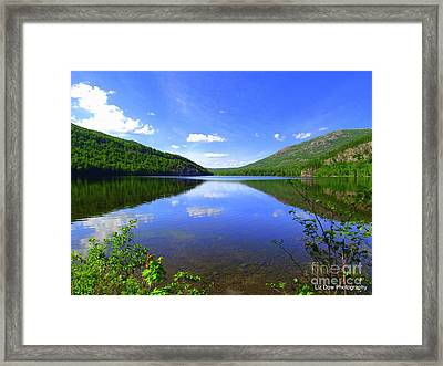 South Branch Pond Framed Print