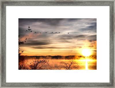Framed Print featuring the photograph South Carolina Morning by Lynne Jenkins
