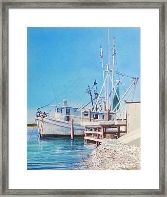 South Carolina Oysters Framed Print