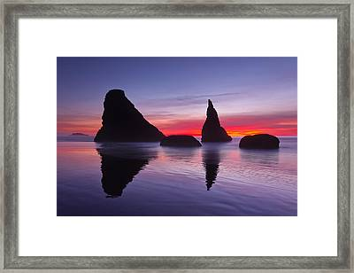 South Coast Reds Framed Print by Darren  White