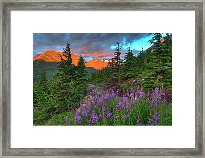 South Fork Trail Near Eagle River Framed Print