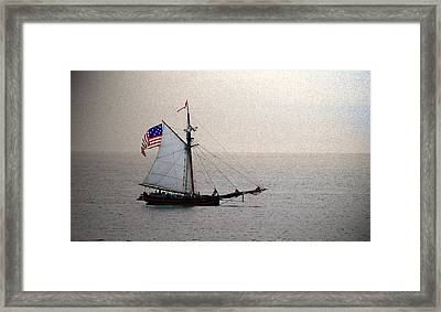 South Haven Sailing Framed Print