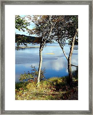 South Ingonish Afternoon Framed Print by Janet Ashworth
