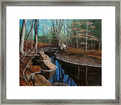 South Mountain Stream Framed Print