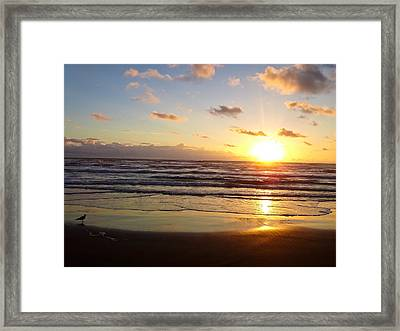 South Padre Island Sunrise Framed Print