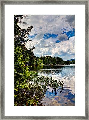 South Shore Of Bubb Lake Framed Print by David Patterson