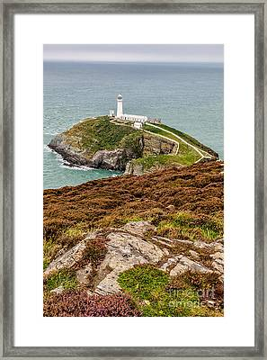 South Stack Lighthouse Framed Print by Adrian Evans