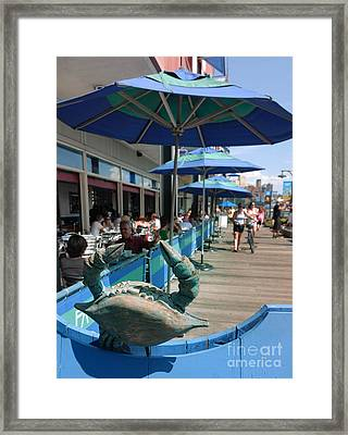 South Street Seaport New York Crab Framed Print by Amy Cicconi