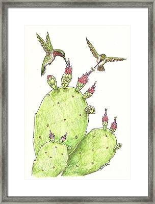 South Texas Nopales For Breakfast Framed Print