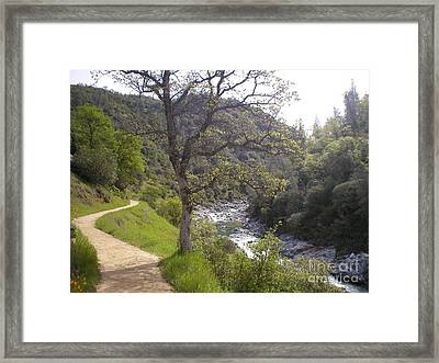 South Yuba Trail Framed Print