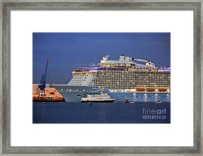 Size Matters Framed Print by Terri Waters