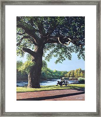Southampton Riverside Park Oak Tree With Cyclist Framed Print by Martin Davey