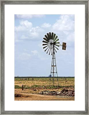 Southeast Kenya... Framed Print by Nina Stavlund