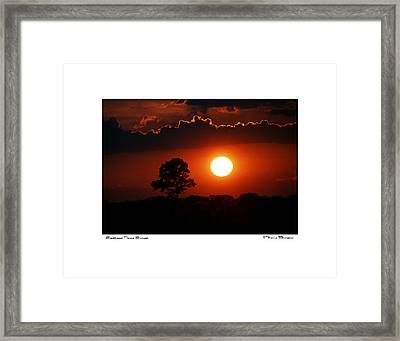 Southeast Texas Sunset Framed Print by Travis Burgess