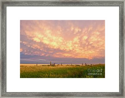 Southeastern New Mexico Framed Print by Roselynne Broussard