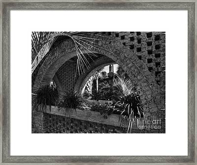 Southern Arches Bw Framed Print by Mel Steinhauer