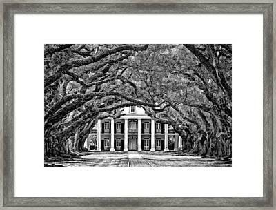 Southern Class Monochrome Framed Print by Steve Harrington