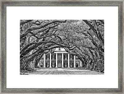 Southern Class Oil Bw Framed Print by Steve Harrington