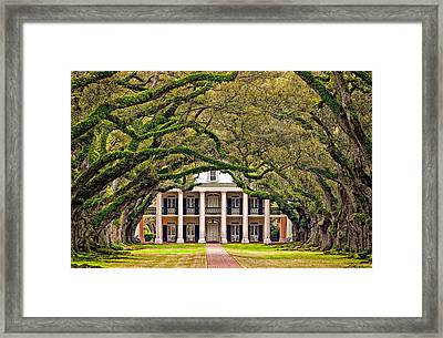 Southern Class Framed Print