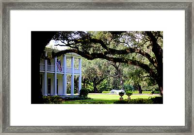 Southern Comfort Framed Print by William Tucker