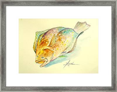 Southern Flounder  Framed Print by Yusniel Santos