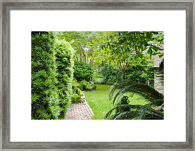 Framed Print featuring the photograph Southern Garden Charleston South Carolina by Vizual Studio