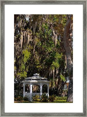 Southern Gothic In Mount Dora Florida Framed Print by Christine Till