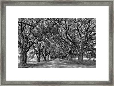 Southern Journey - Oil Bw Framed Print by Steve Harrington