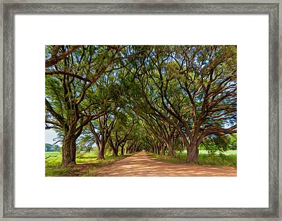 Southern Journey - Oil Framed Print