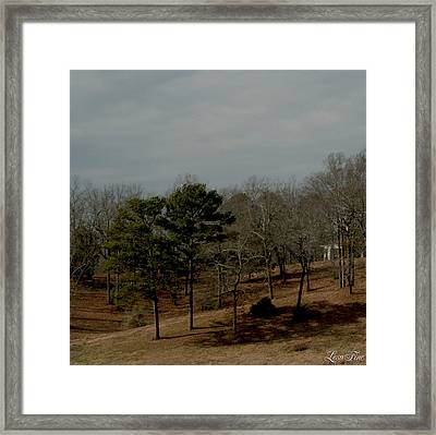 Framed Print featuring the photograph Southern Landscape by Lesa Fine