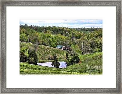 Southern Landscapes IIi Framed Print by Chuck Kuhn