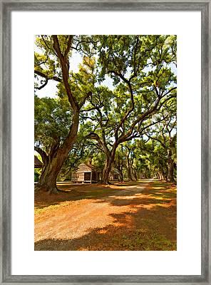 Southern Lane Paint Filter Framed Print