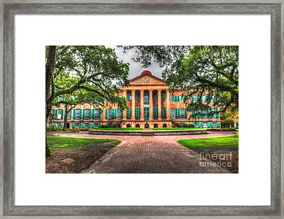 Southern Life Framed Print