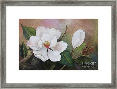 Southern Magnolias II By Barbara Haviland Framed Print