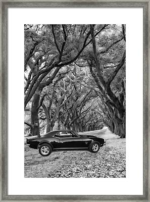 Southern Muscle Framed Print by Steve Harrington