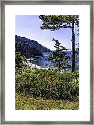 Southern Oregon Coastline Framed Print