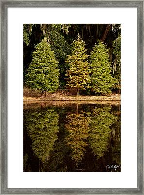 Southern Reflections Framed Print by Phill Doherty