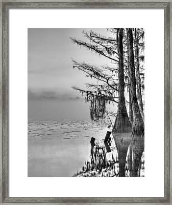 Southern Roots Framed Print by JC Findley