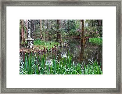 Southern Serenity Framed Print by Carol Groenen