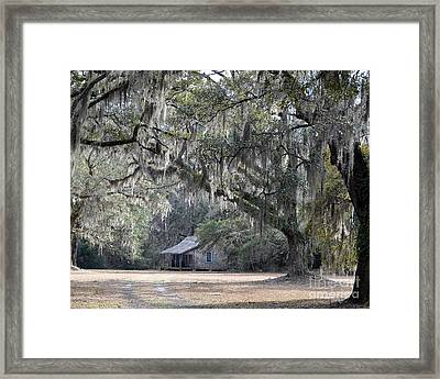 Southern Shade Framed Print by Al Powell Photography USA