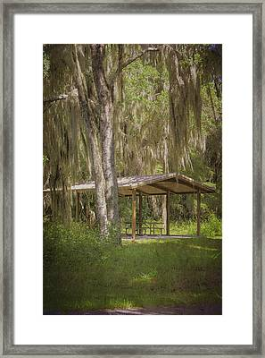 Southern Shade Framed Print by Judy Hall-Folde